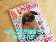 福岡にある素敵な雑貨屋さんとして3月うさぎが紹介されました