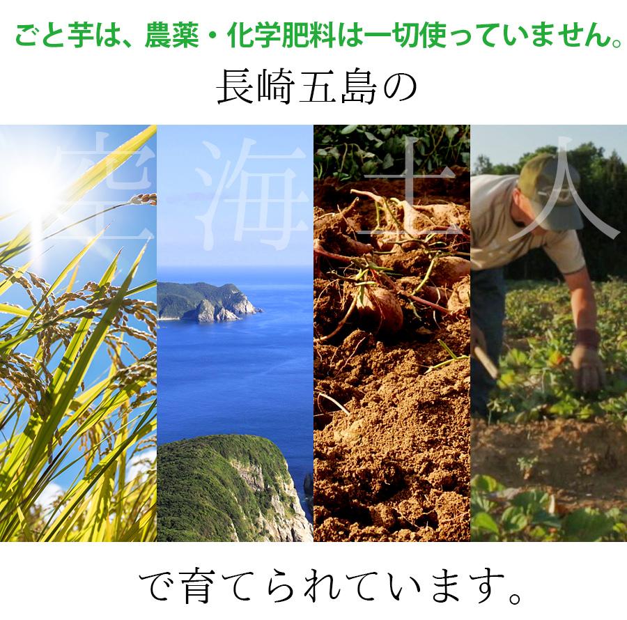 ごと芋は、農薬、化学肥料を一切使っていません